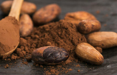 cocoa powder benefits