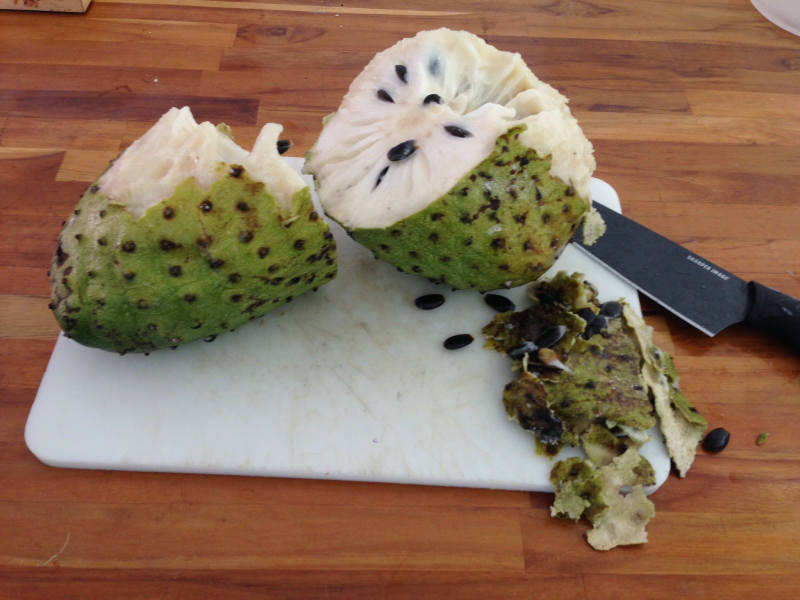 grilled fruit soursop fruit