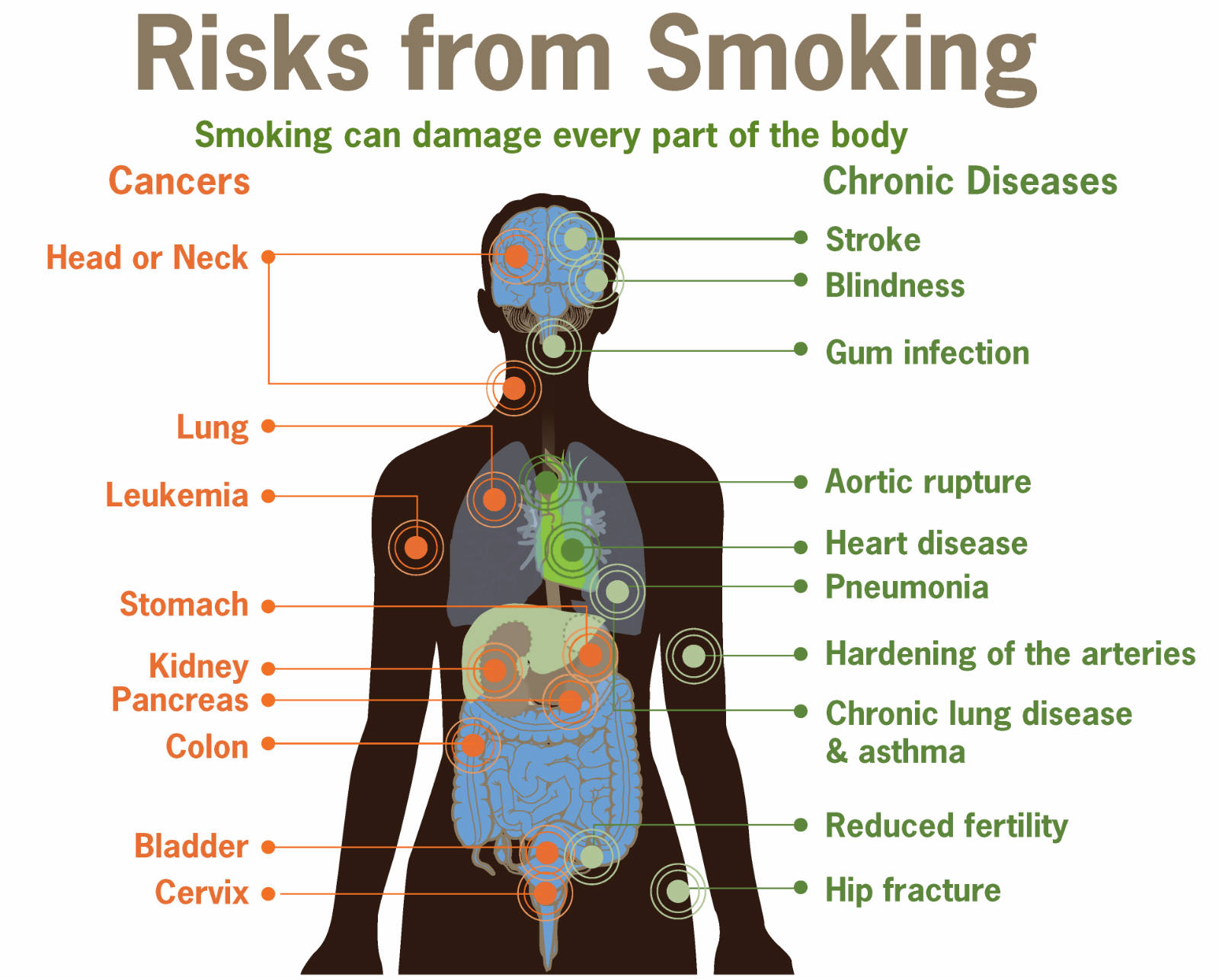 Lung cancer from smoking essay persuasive