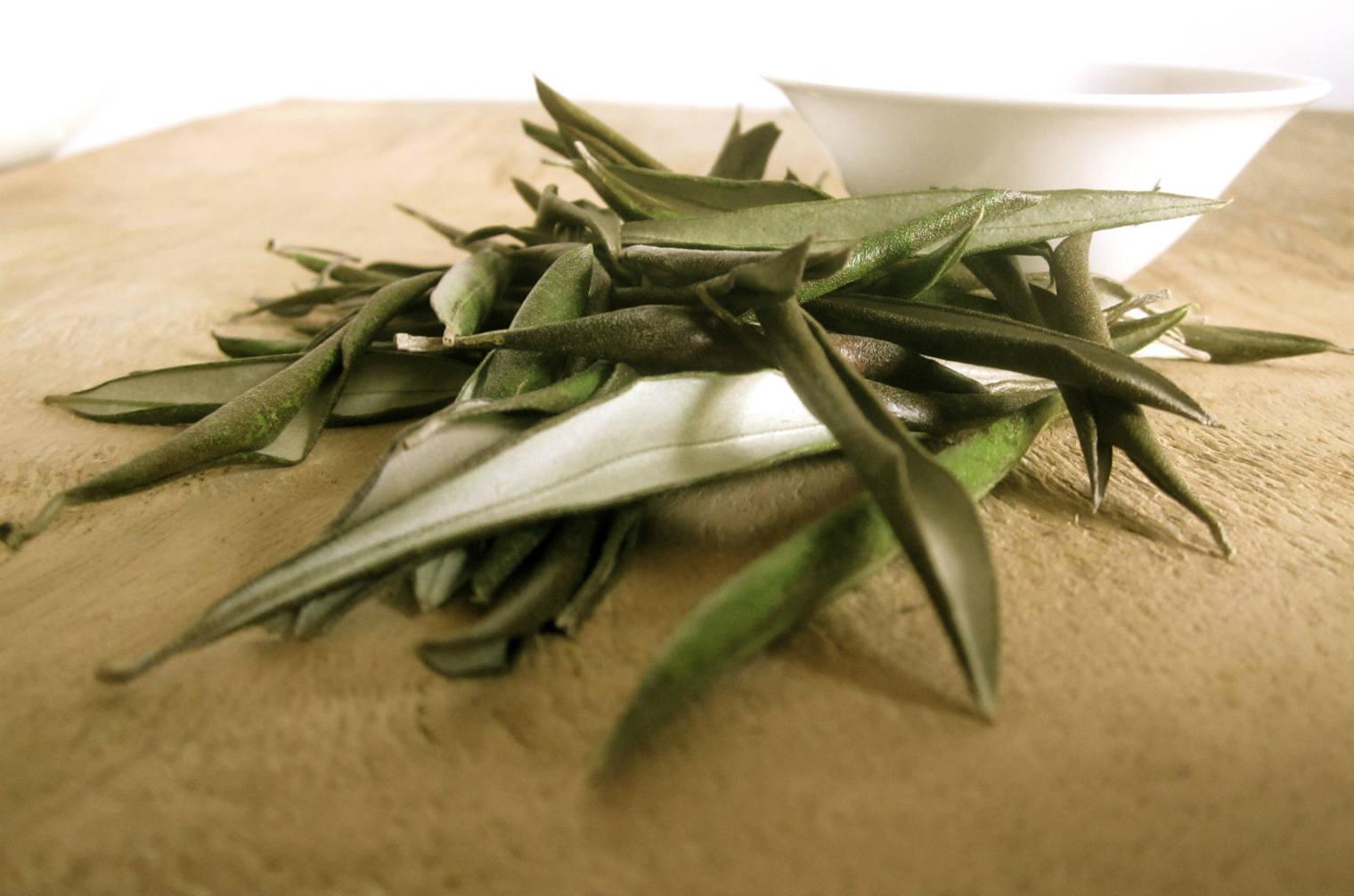 Olive leaf treat herpes sores
