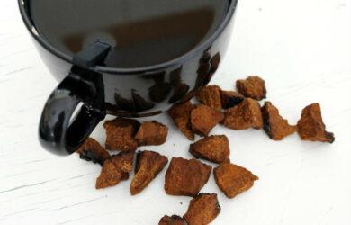 chaga mushroom tea
