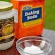 Coconut Oil and Baking Soda as Cure for Skin Cancer