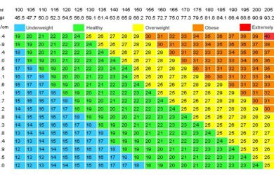 Ideal Weight Loss Calculator