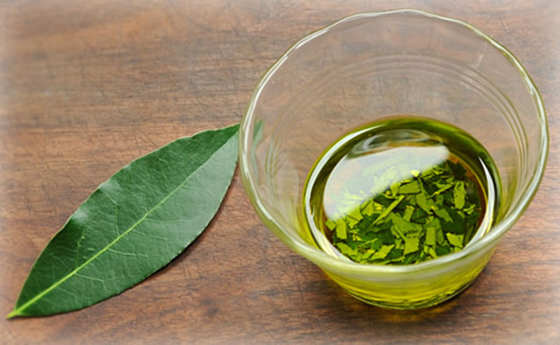 bay-leaf-oil.jpg