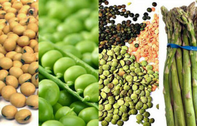 10 Amazing High-Protein Vegetables