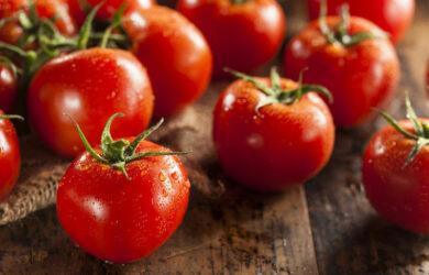 tomato diet lose 5 lbs