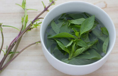 basil tea benefits